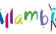 We welcome any size donation to help with the running of Allambie to give our children a secure future. Even...